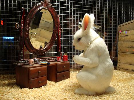 Banksys pet store bunny