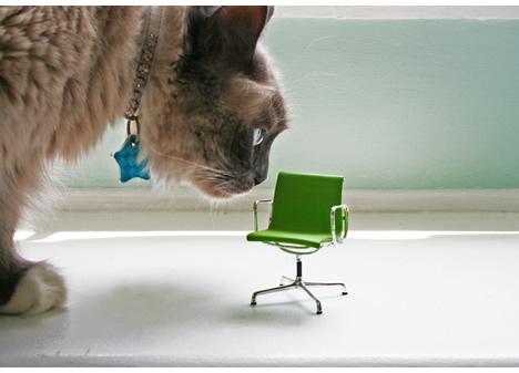 Veruschka and mini green eames chair