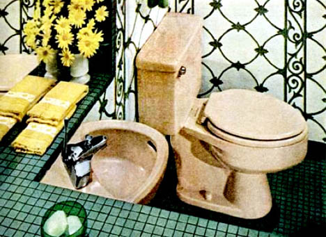 1960s_bathroom_pink_toilet_retro_daisy