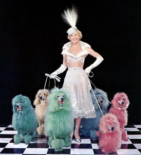 Doris_day_rainbow_poodles_vintage