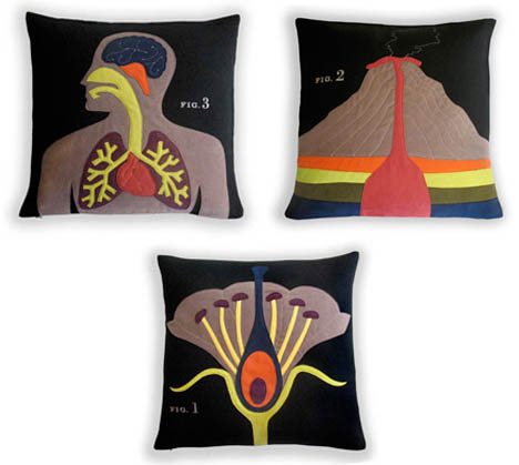 Heather_lins_science_project_pillow_volcano