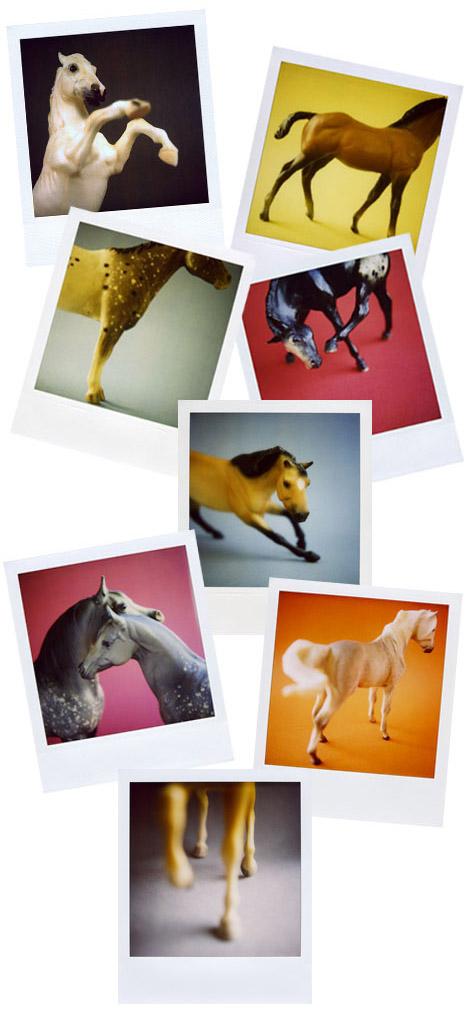 Elizabeth_soule_polaroid_horses