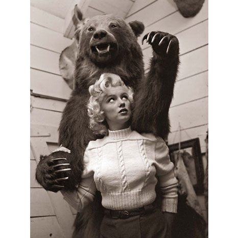 Marilyn-monroe-grizzy-bear