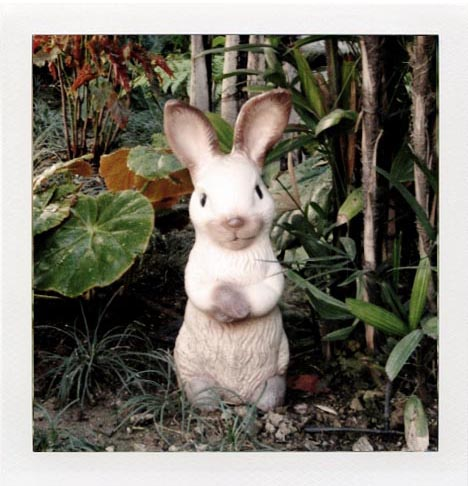 Marvimon-rabbit-bunny-garden-decor