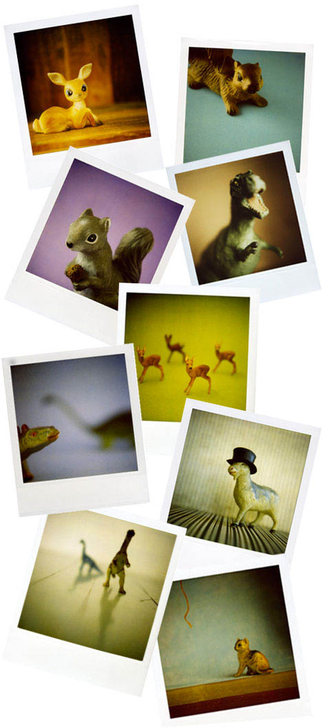 Elizabeth-e-soule-polaroids-dinosaurs-animals