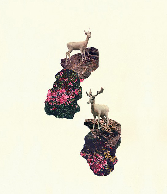 Francisca-pageo-albino-deer-collage-illustration-art