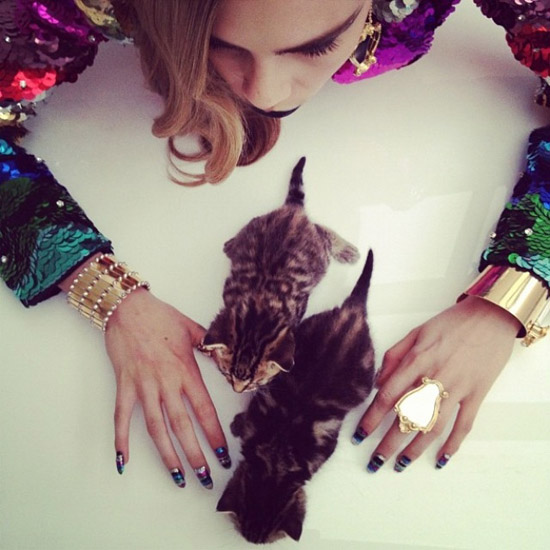 Instagram-cara-delevingne-fashion-kittens