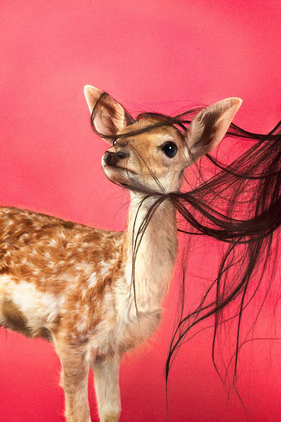 Ryan-McGinley-photography-deer-hair-new-york-team-gallery