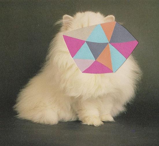 Rachel-loves-bob-Collaged-cat-print