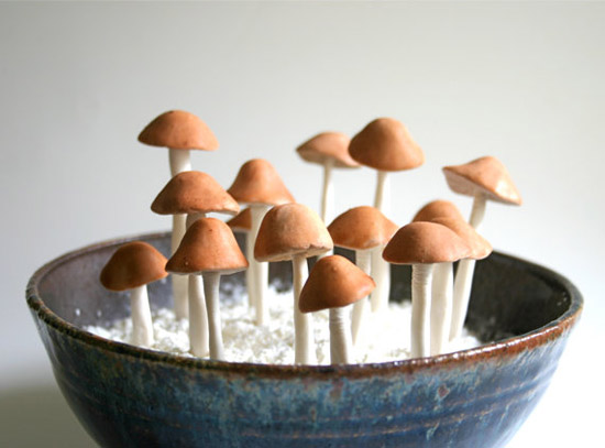 Andie-specialty-sweets-etsy-Edible-Wild-Sugar-Mushrooms