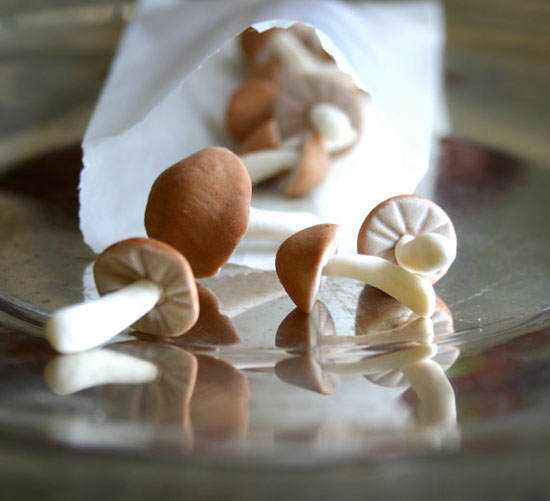 Andie-specialty-sweets-etsy-Edible-TINY-Wild-Sugar-Mushrooms