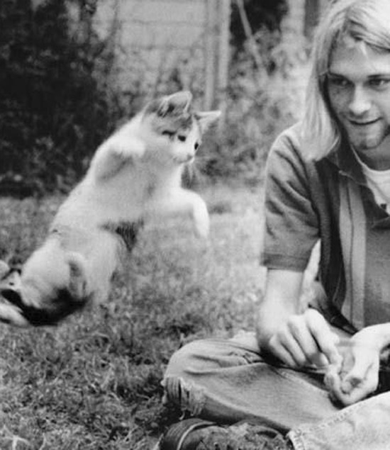 Kurt-cobain-magic-flying-cat