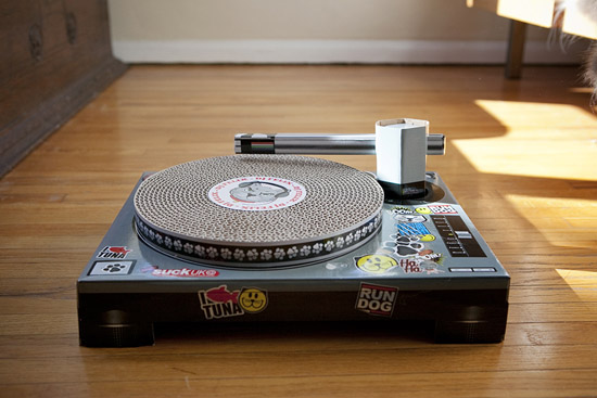 this holiday, we gave our cats the gift of a cardboard DJ turntable ...