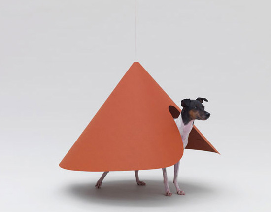 Pointed T by NDC Haruka Misawa for a Japanese Terrier in Architecture for Dogs