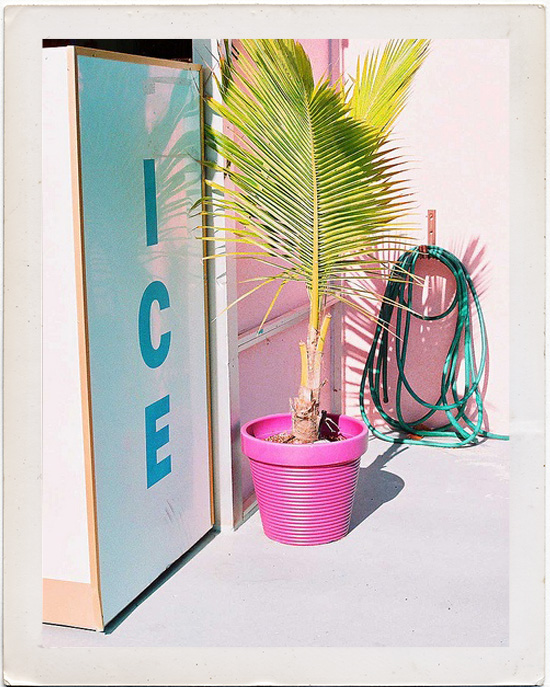 Ice machine and a pink pot