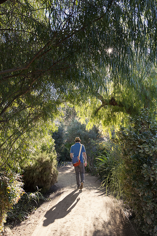 The Parker Palm Springs walking path